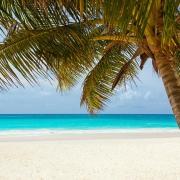 divorcios y vacaciones de verano