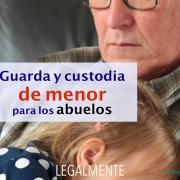 guardia y custodia de menor para los abuelos