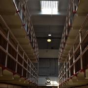 abogados prision provisional
